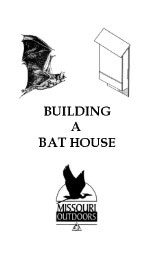 Bat House Construction Project